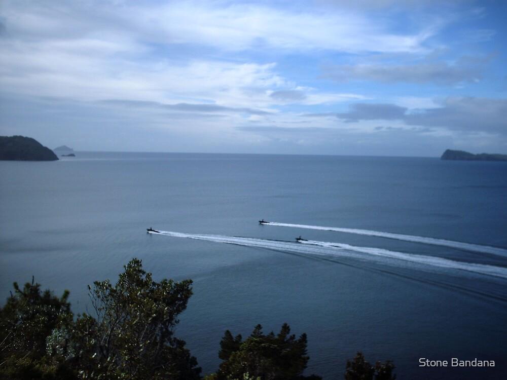 scenic black ops ocean by Stone Bandana