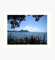 Foliage foreground ocean view volcano island Art Print