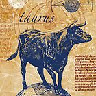taurus | bull by artanjo