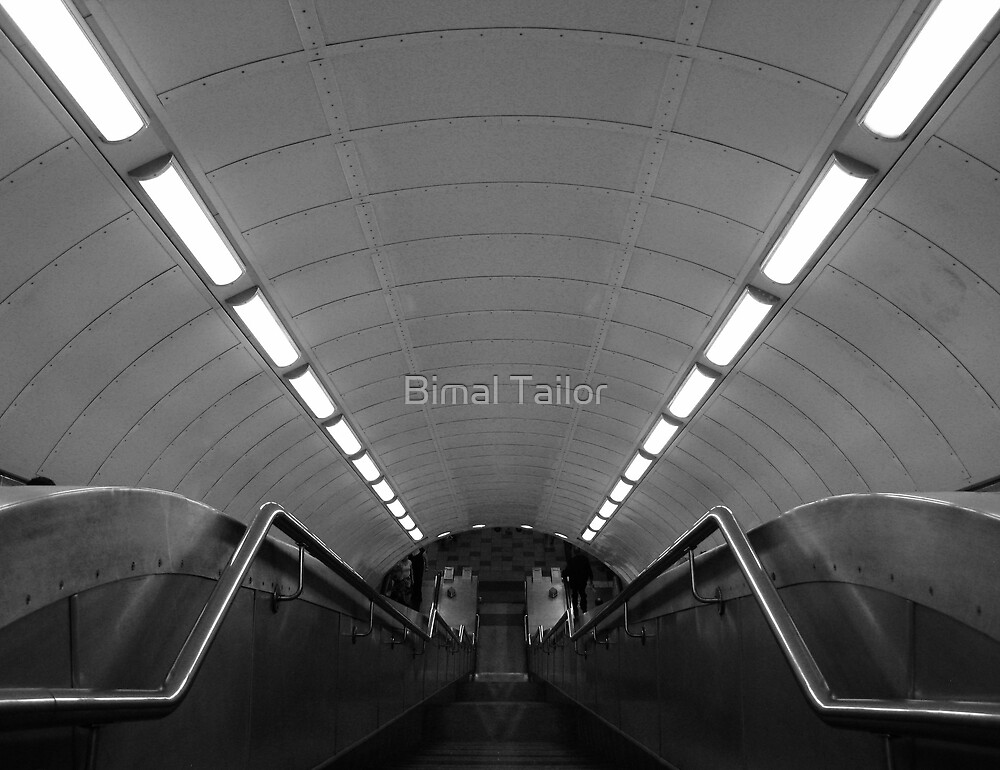 Tube Spider by Bimal Tailor