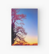 Queen Of The Tree Tiger Hardcover Journal