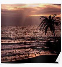 Sunset Flight Poster