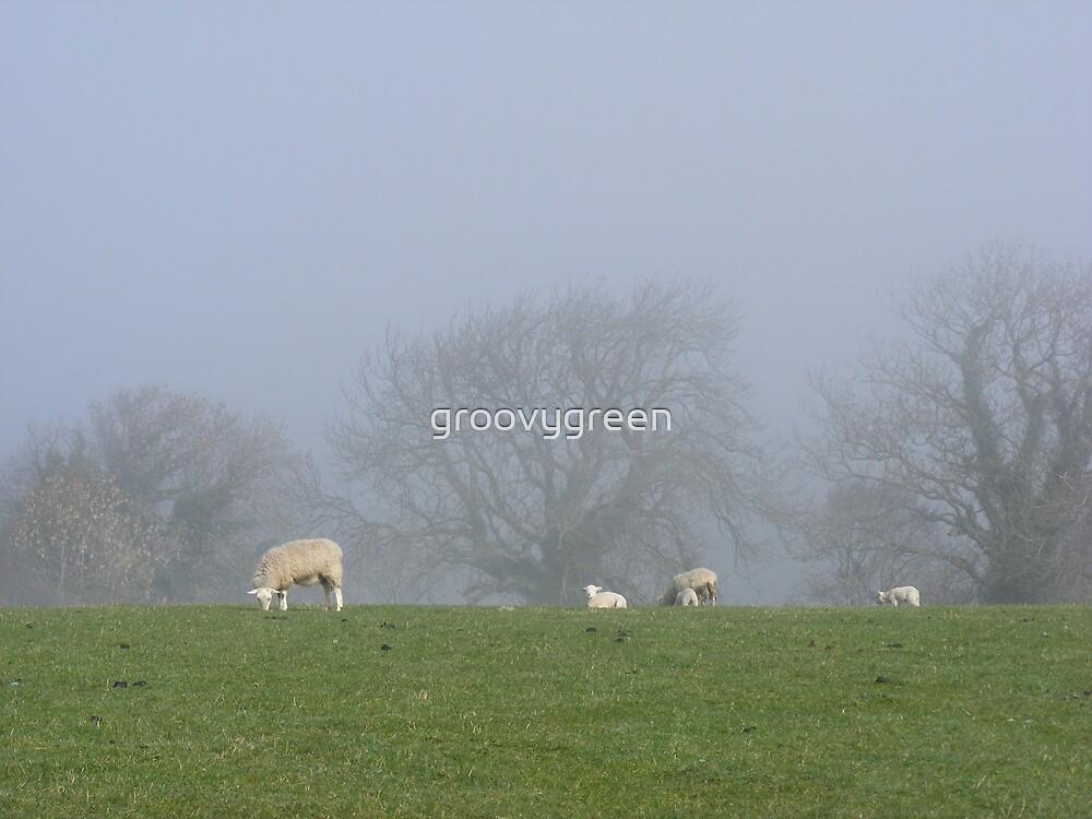 Spring Mist by groovygreen