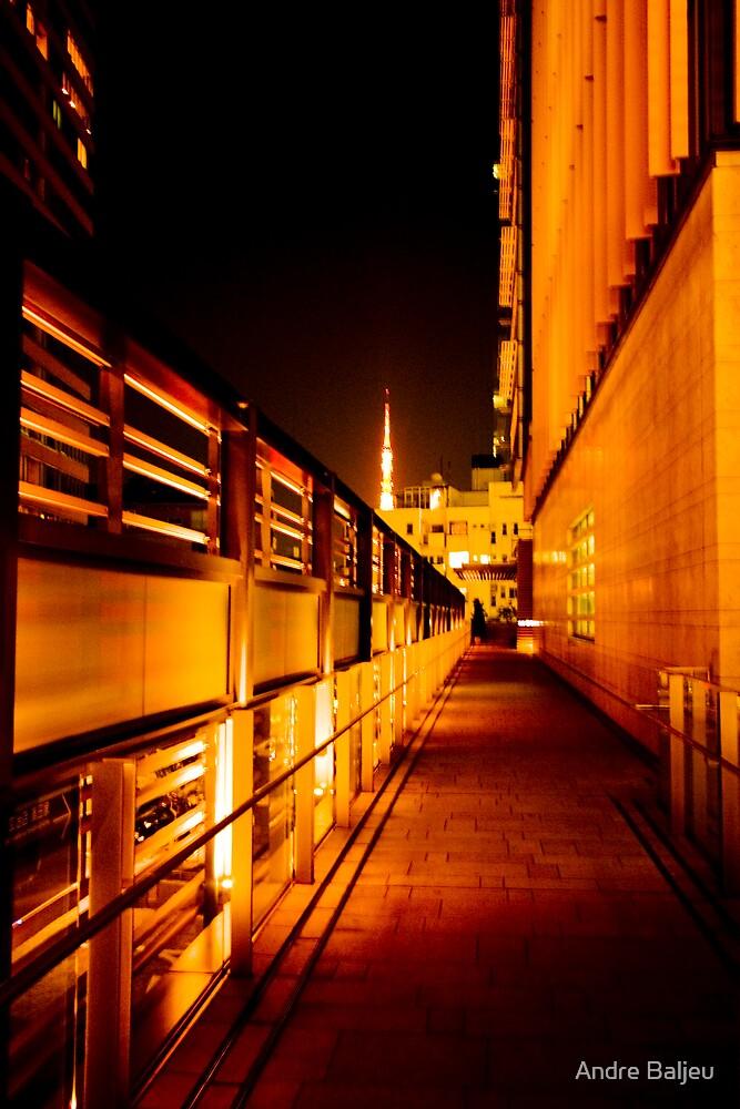 Tokyo Night by Andre Baljeu