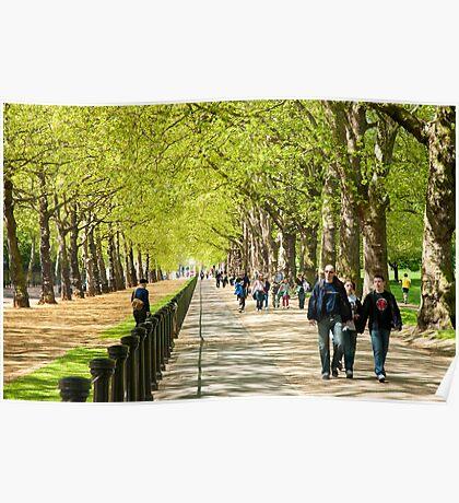 Green Park Buckingham Palace London Poster
