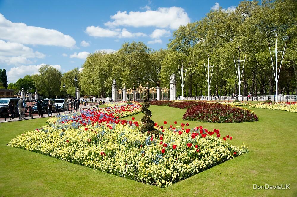 Beautiful Buckingham Palace Flower Beds in Spring by DonDavisUK