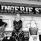 The Lingerie Store by LynnH