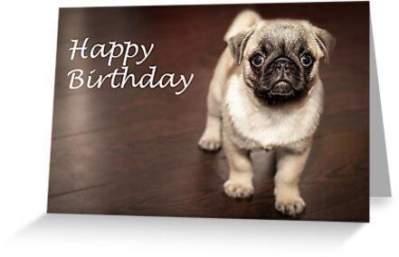 Happy Birthday Pug Dog By Kirk Arts