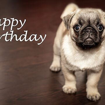 Happy Birthday Pug Dog by jonasscorpio