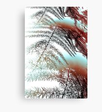 Abstract Of Asparagus Fern Canvas Print