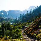 Mountain Trail, North Cascades by Yulia Kazansky
