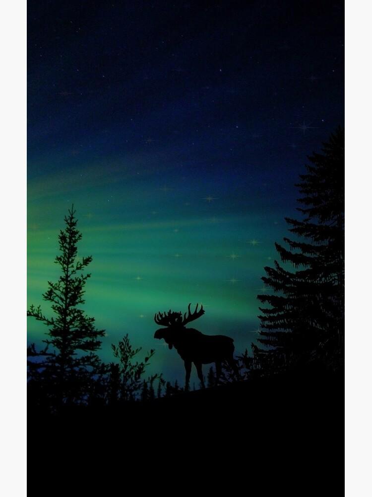Elch mit Nordlichtern von crazycanonmom