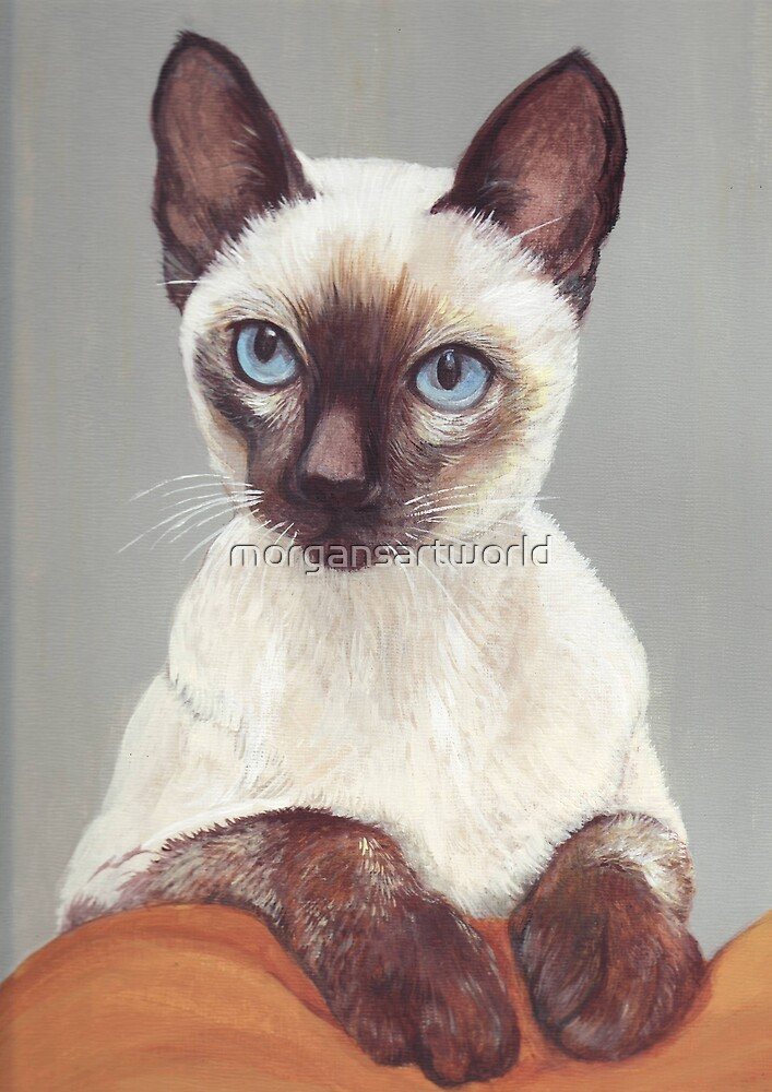 Siamese Cat by morgansartworld