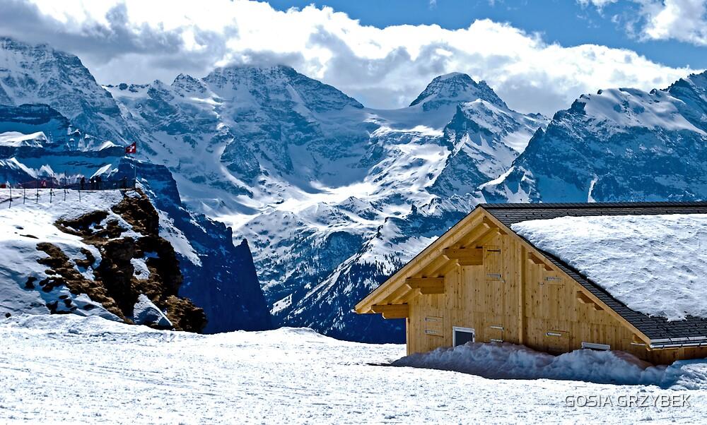 Alpine Landscape.....Männlichen -Swiss by GOSIA GRZYBEK