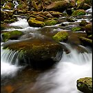 Roaring Fork, GSMNP by ThomasRBiggs