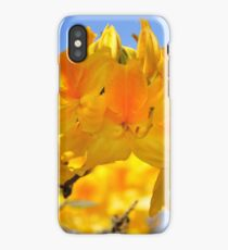 Yellow Rhododendron Flowers. Spring Pruhonice Park iPhone Case