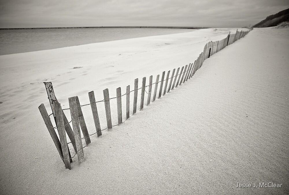 Fenced Beach by Jesse J. McClear