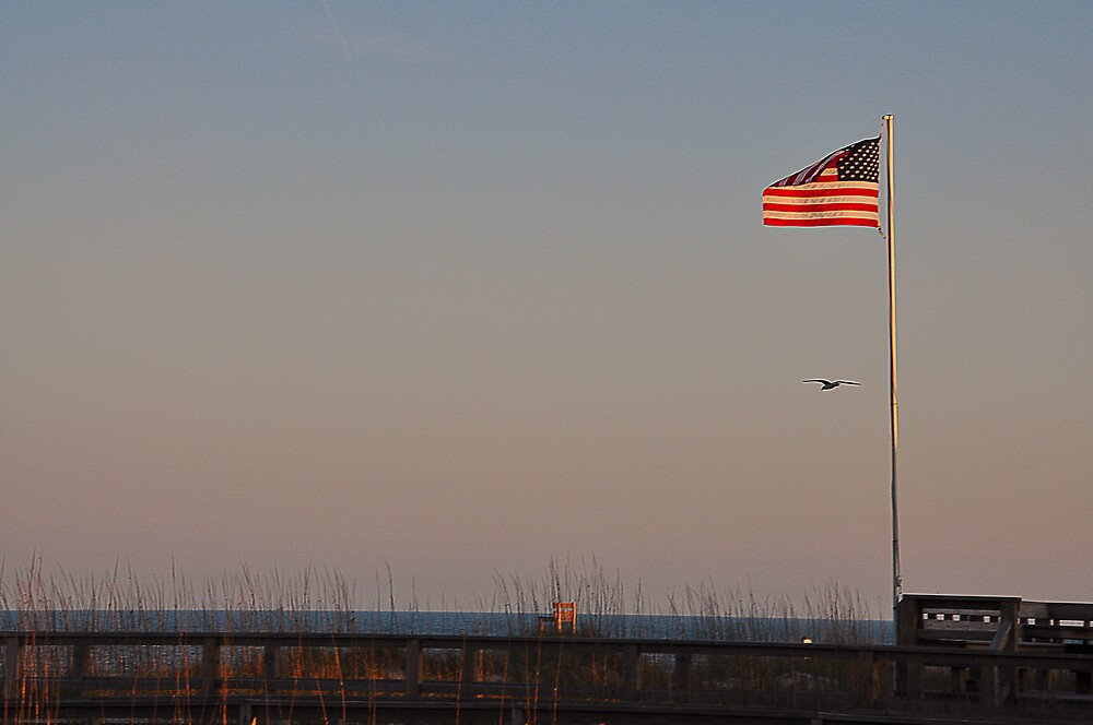 Carolina Beach  by PJS15204