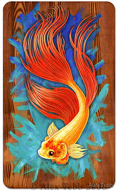 Gold Fighting Fish by Alex Tebb