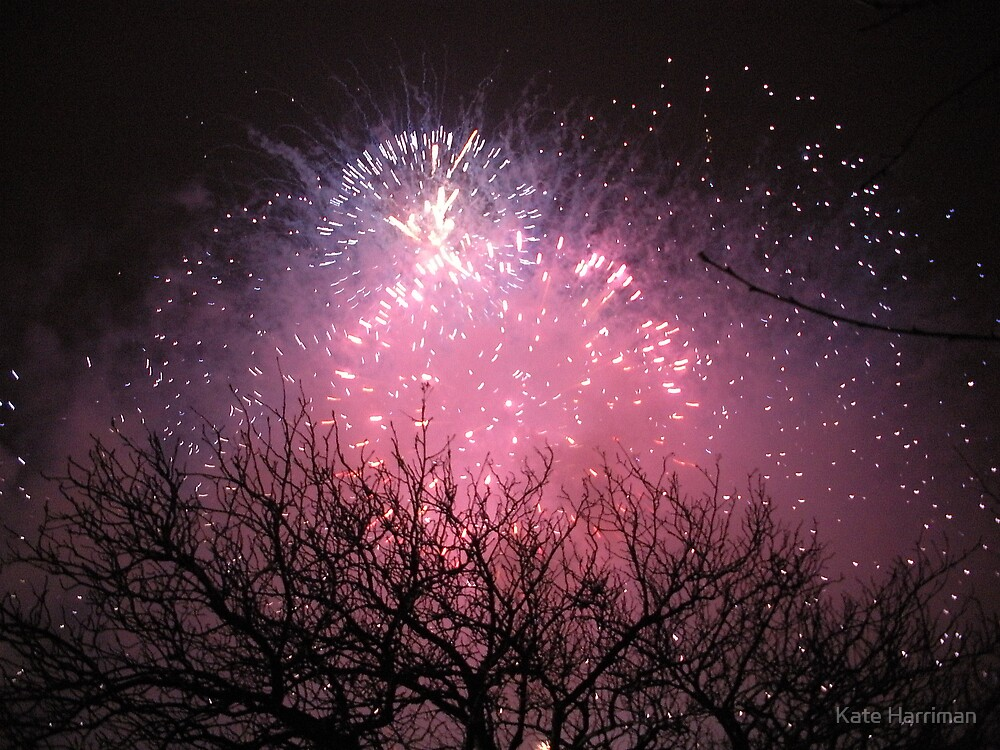 Fireworks over Edinburgh Castle by Kate Harriman
