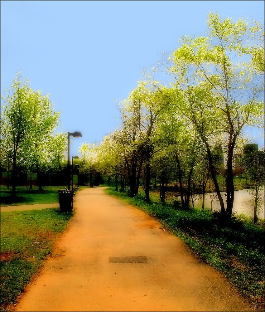 A River's Walk by Donnie Shackleford