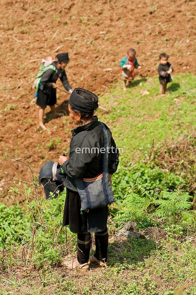 Mountain tribe working Padi Field. by emmettm