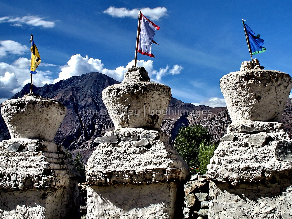ancient stupas. ladakh, india by tim buckley   bodhiimages