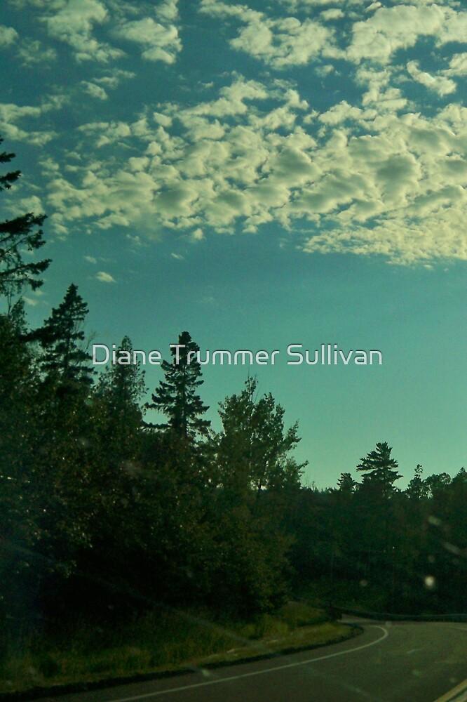 Around the Bend!  Windshield shot! by Diane Trummer Sullivan