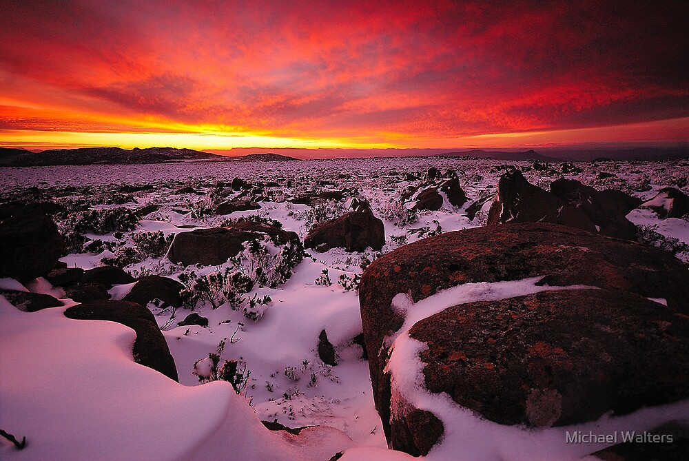 The First Snow (view largre) by Michael Walters