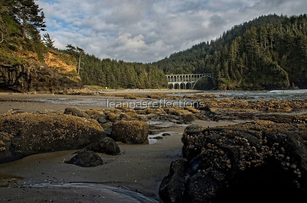 Low Tide by leannasreflections