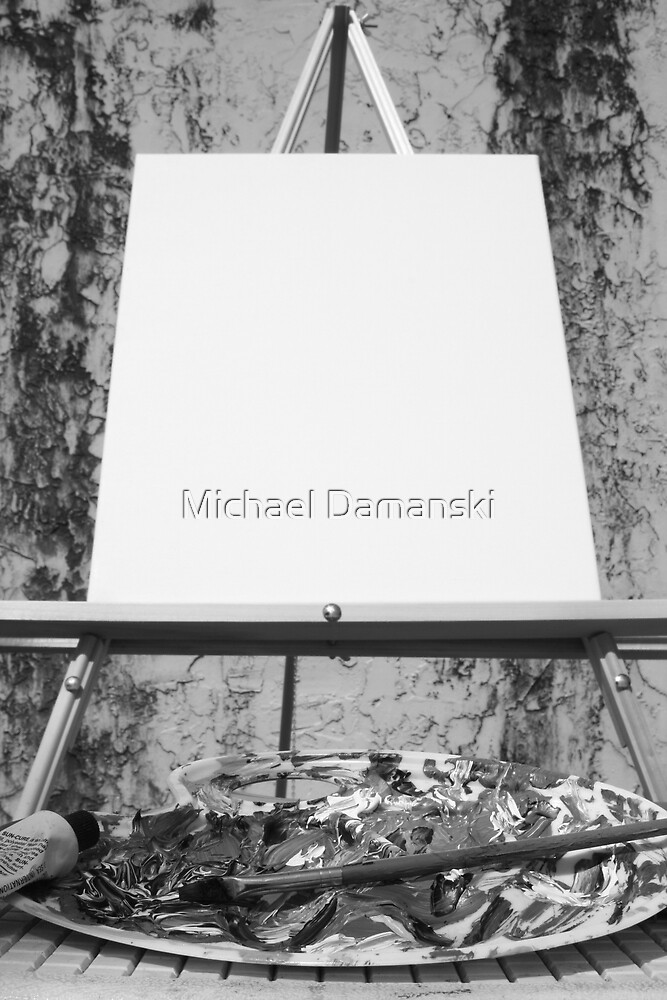The Canvas by Michael Damanski
