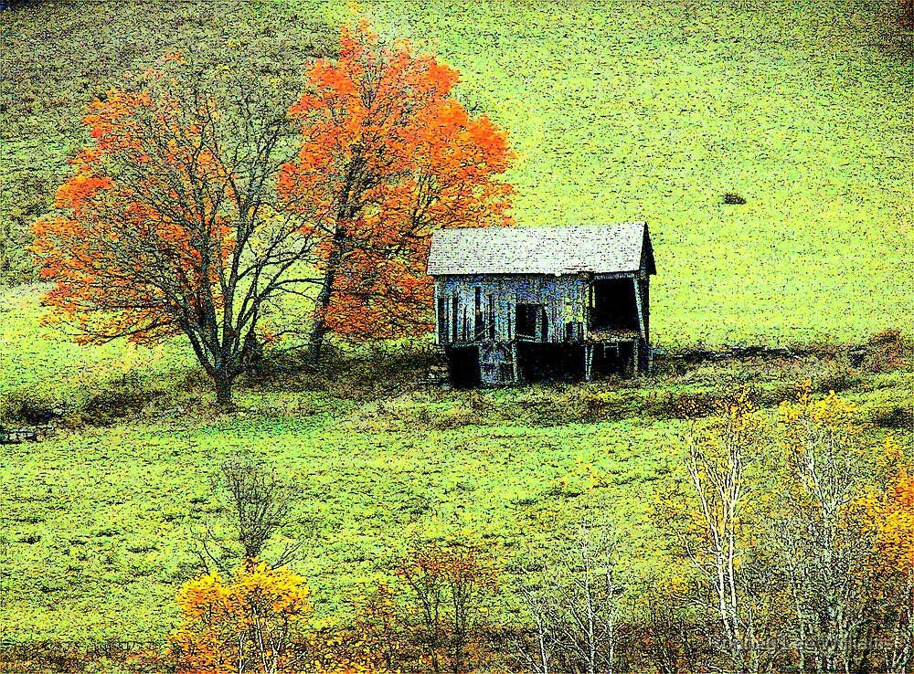 Old Barn In Late Autumn by Rodney Lee Williams