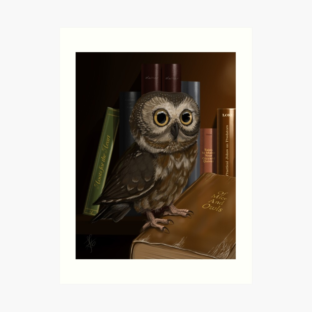 Dory Visits the Library Art Print