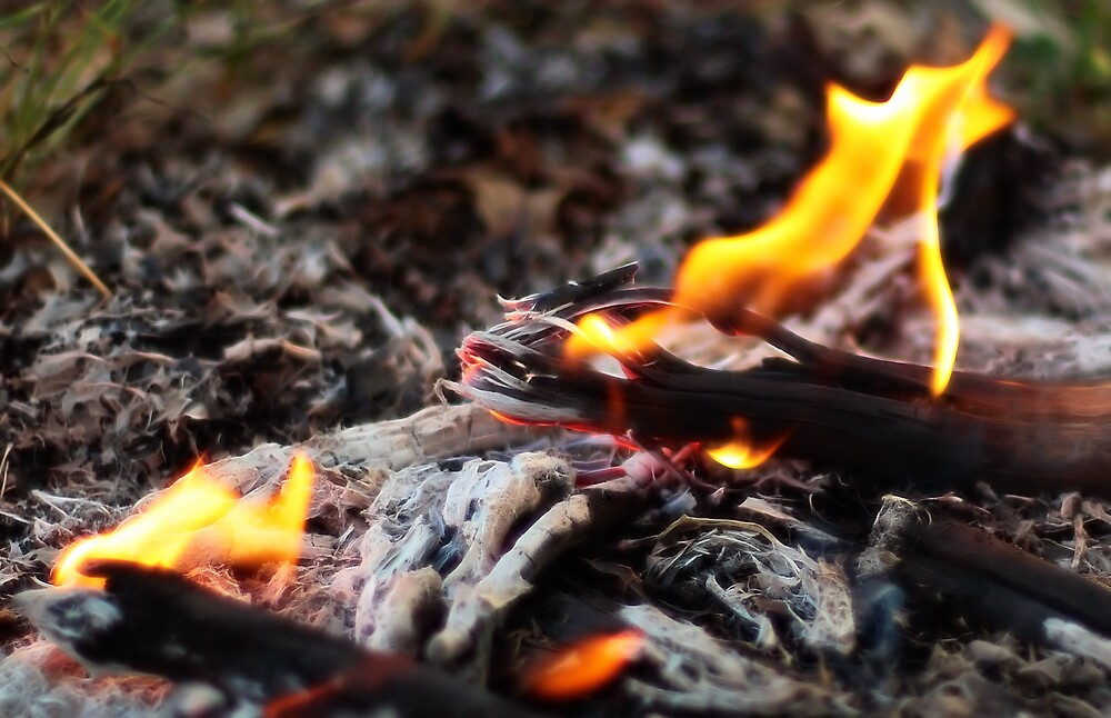 Fire by Darren Post