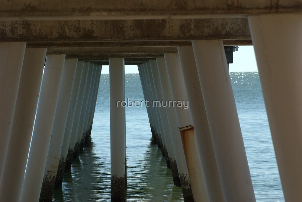Under Torquay Pier by robert murray
