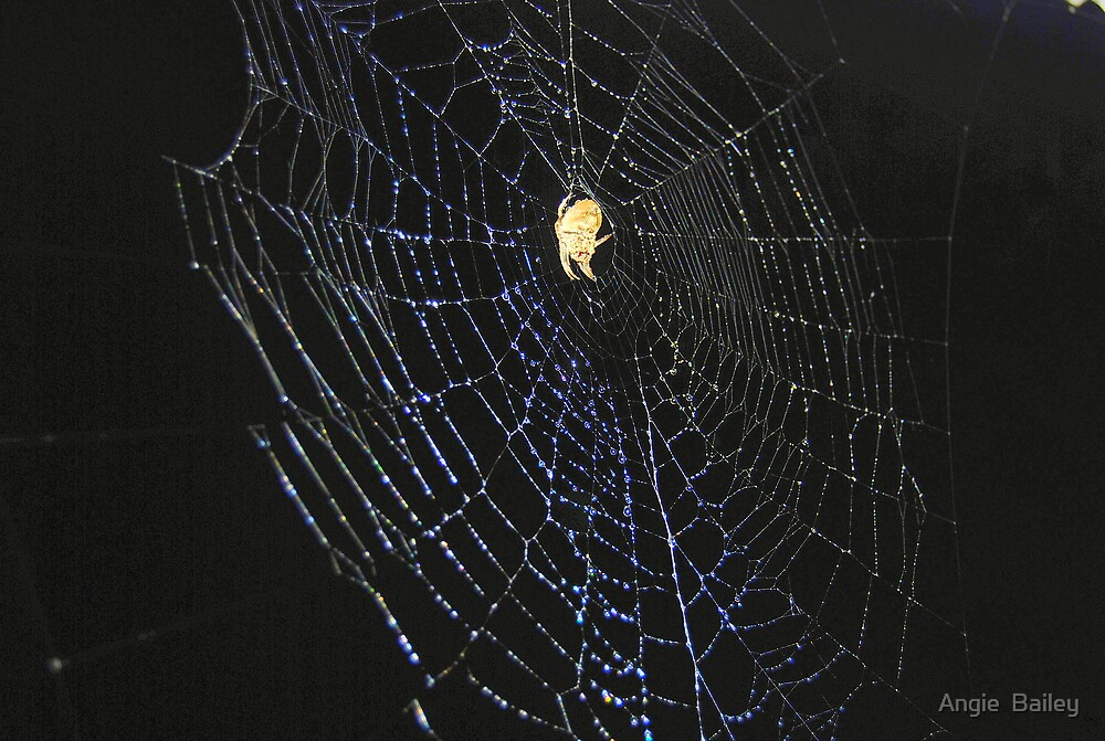 Spider Chandelier by Angie  Bailey