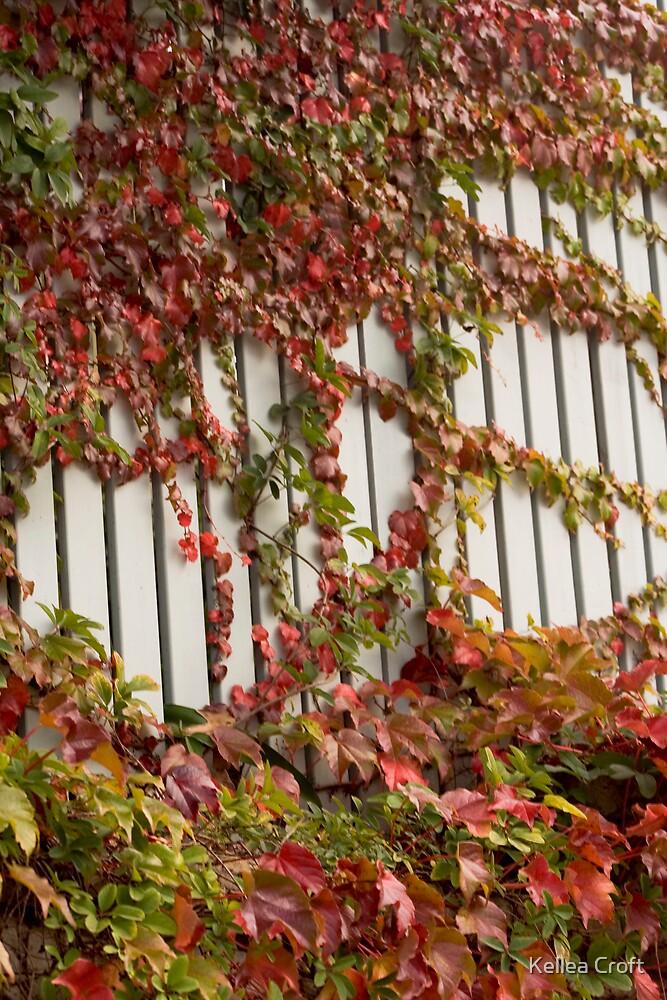 Autumn Fencework by Kellea Croft