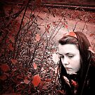 Red Autumn by Frost Foto