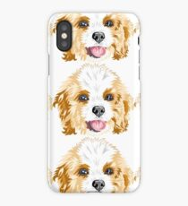 Gracie the Cavoodle iPhone Case