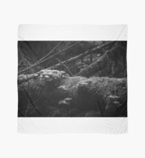 Untitled (Fungi on a log - in monochrome) Scarf