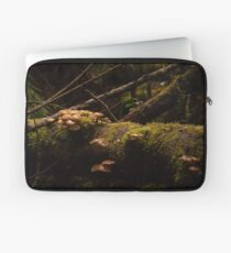 Untitled (Fungi on a log - in colour) Laptop Sleeve