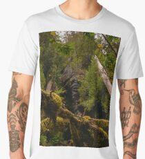 Canopy above Growling Swallet Men's Premium T-Shirt