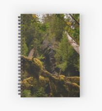 Canopy above Growling Swallet Spiral Notebook