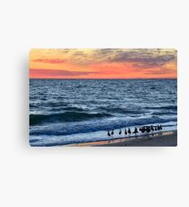 Willets and Sundown Surf Canvas Print