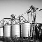 Grain Silo's by Daniel Crampton