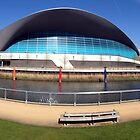 The London Aquatics Centre II by John Gaffen