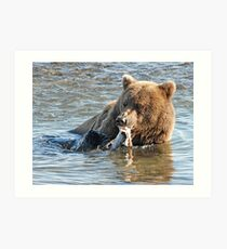Bear Series # 11 Art Print