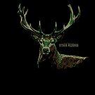 Deer Camo / American Outdoor Wilderness by David Sanders