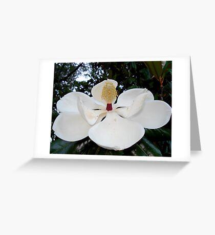 Magnolia Angel Greeting Card