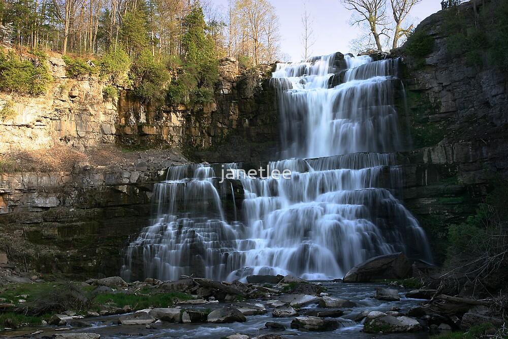 Spring Falls by janetlee